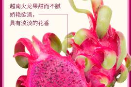 【京东直供】越南进口红心火龙果 4个装 单果约350~400g 新鲜水果 超低价格