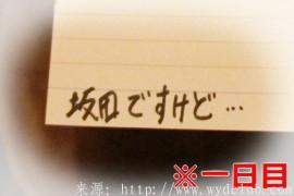 日本街头小调查——在厕所里放一本记事本让你涂鸦,看看你会画些什么?(下篇(1))