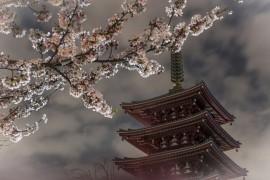 东京上野浅草区域 | 1天时间游玩6大特色超棒景点