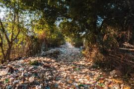 科学家们发现处理塑料垃圾的新方法
