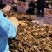 """除了阳澄湖蟹,盒马买手还找到这些""""宝藏""""蟹"""