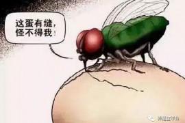非瘟下中国猪业必由之路—健康养殖
