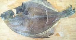 红烧多宝鱼的做法步骤