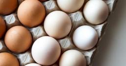 吃了这么多年的鸡蛋,今天才知道红壳和白壳的区别,别再买错了