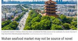 """华南海鲜市场""""翻盘""""?未必是新型冠状病毒发源地"""