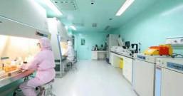 上海:新型冠状病毒mRNA疫苗研发正式立项