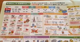 垃圾分类:日本不是好榜样