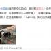 上海游客拒与武汉游客同机 惊动日本机场