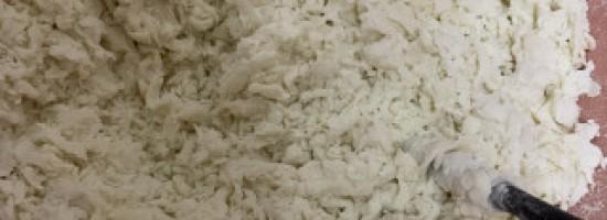 白菜豆腐粉丝包子的做法步骤
