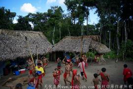 新冠病毒入侵亚马逊雨林 15岁少年染疫亡