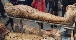 连埃及豔后都被带来 大英博物馆 BRITISH MUSEUM 埃及区木乃伊 (慎入)