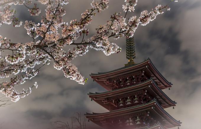 东京上野浅草区域 | 1天时间游玩6大特色超棒景点 旅游资讯 第1张