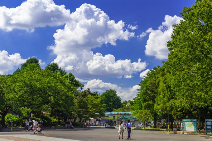 东京上野浅草区域 | 1天时间游玩6大特色超棒景点 旅游资讯 第2张