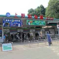 东京上野浅草区域 | 1天时间游玩6大特色超棒景点 旅游资讯 第4张