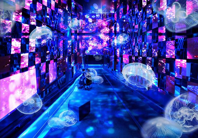 东京上野浅草区域 | 1天时间游玩6大特色超棒景点 旅游资讯 第14张