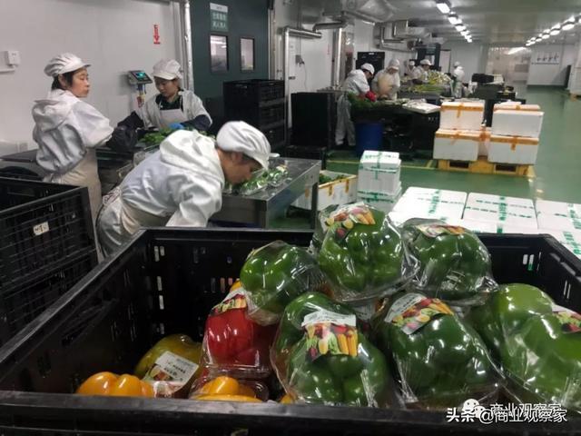 永辉B2B全品类发力:彩食鲜总部北上,全国布仓,年内50亿销售 经营参考 第3张