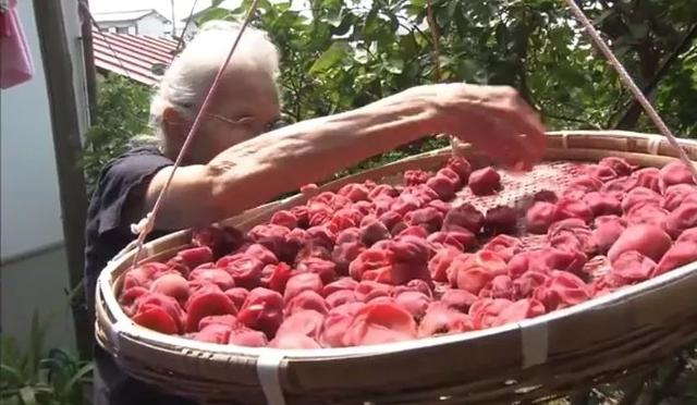 为什么在吃上费这么多功夫?食物比钱重要:两位90岁老人的治愈人生 饮食文化 第9张