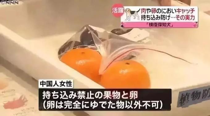 日本机场入关指南,准备去旅行的你都知道吗? 旅游资讯 第15张