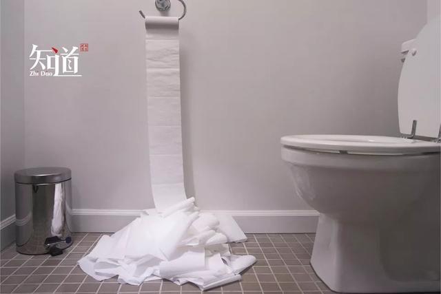 厕纸,要不要丢进纸篓? 生活资讯 第1张