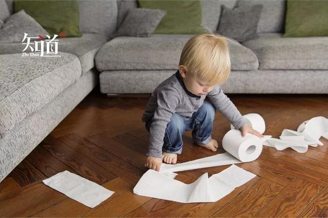 厕纸,要不要丢进纸篓? 生活资讯 第2张