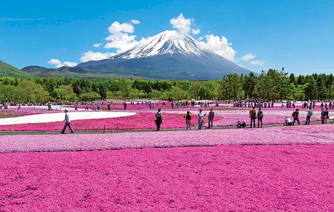 富士山N种玩法大揭秘 旅游资讯 第8张