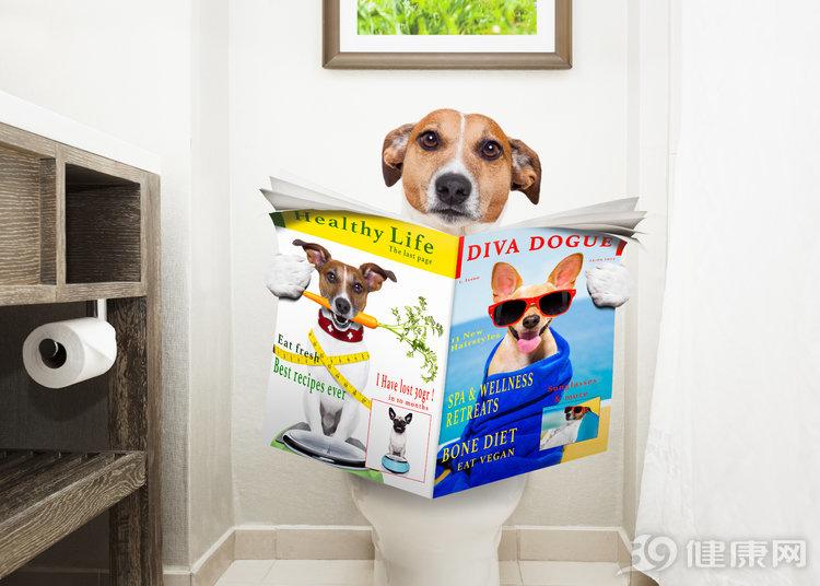 一般情况下,男人都是站着尿尿,为何日本男人更愿意蹲着排尿? 生活与健康 第1张