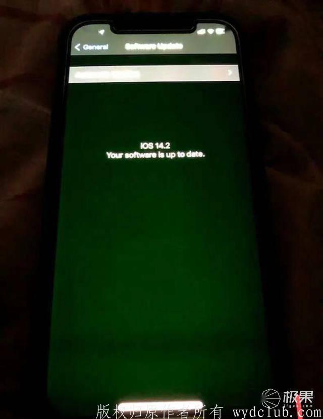 """苹果承认iPhone""""绿屏""""为系统问题,网友:屏幕混用是本因,一招教识别  消费与科技 第2张"""