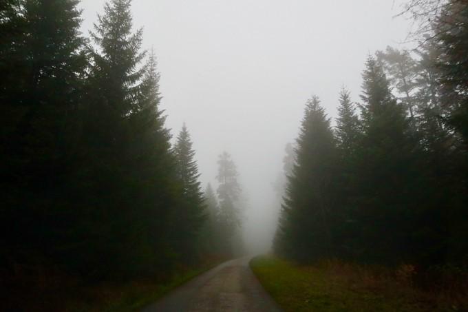 自驾德国黑森林之路,浪漫之路世遗打卡游 旅游资讯 第9张