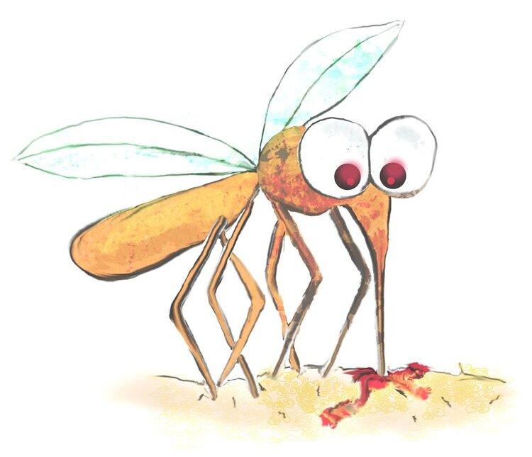 那么多人在一起,为什么蚊子偏咬你?真正原因找到了,与血型无关 家庭生活 第5张
