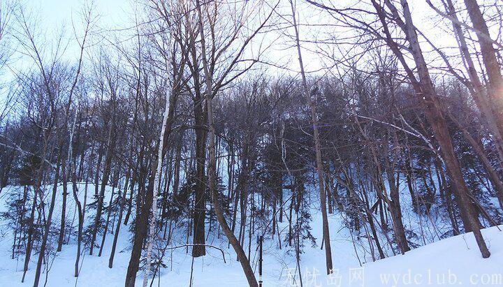 遊记 《旅记:世界裂痕处等你》:雪中琉璃 旅游资讯 第3张