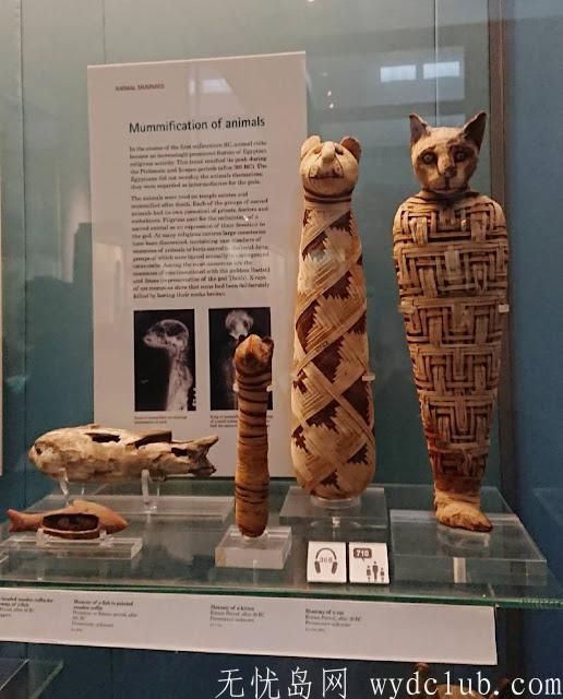 连埃及豔后都被带来 大英博物馆 BRITISH MUSEUM 埃及区木乃伊 (慎入) 旅游资讯 第5张