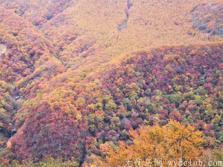 日本三大瀑布--袋田瀑布,华巖瀑布,那智瀑布 旅游资讯 第11张