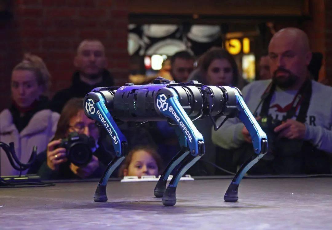 公司怎么都开始「造狗」了?  消费与科技 第4张