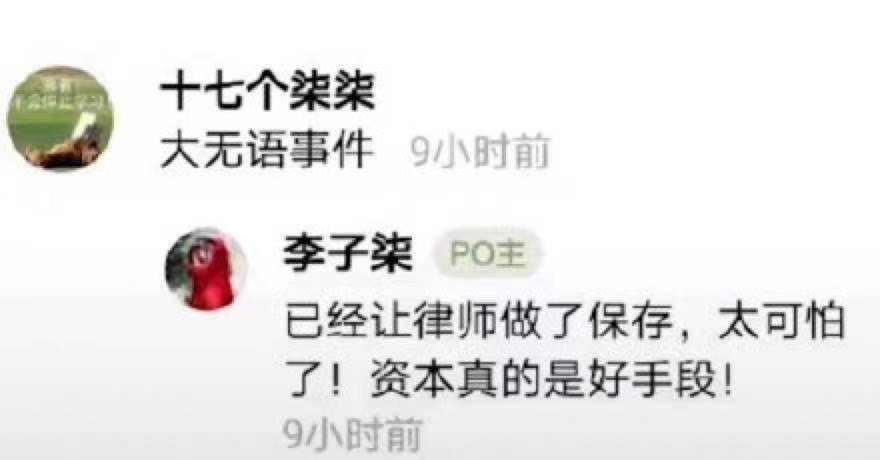 李子柒迷局:视频停更66天 千万网红斗不过资本? 无忧杂谈 第1张