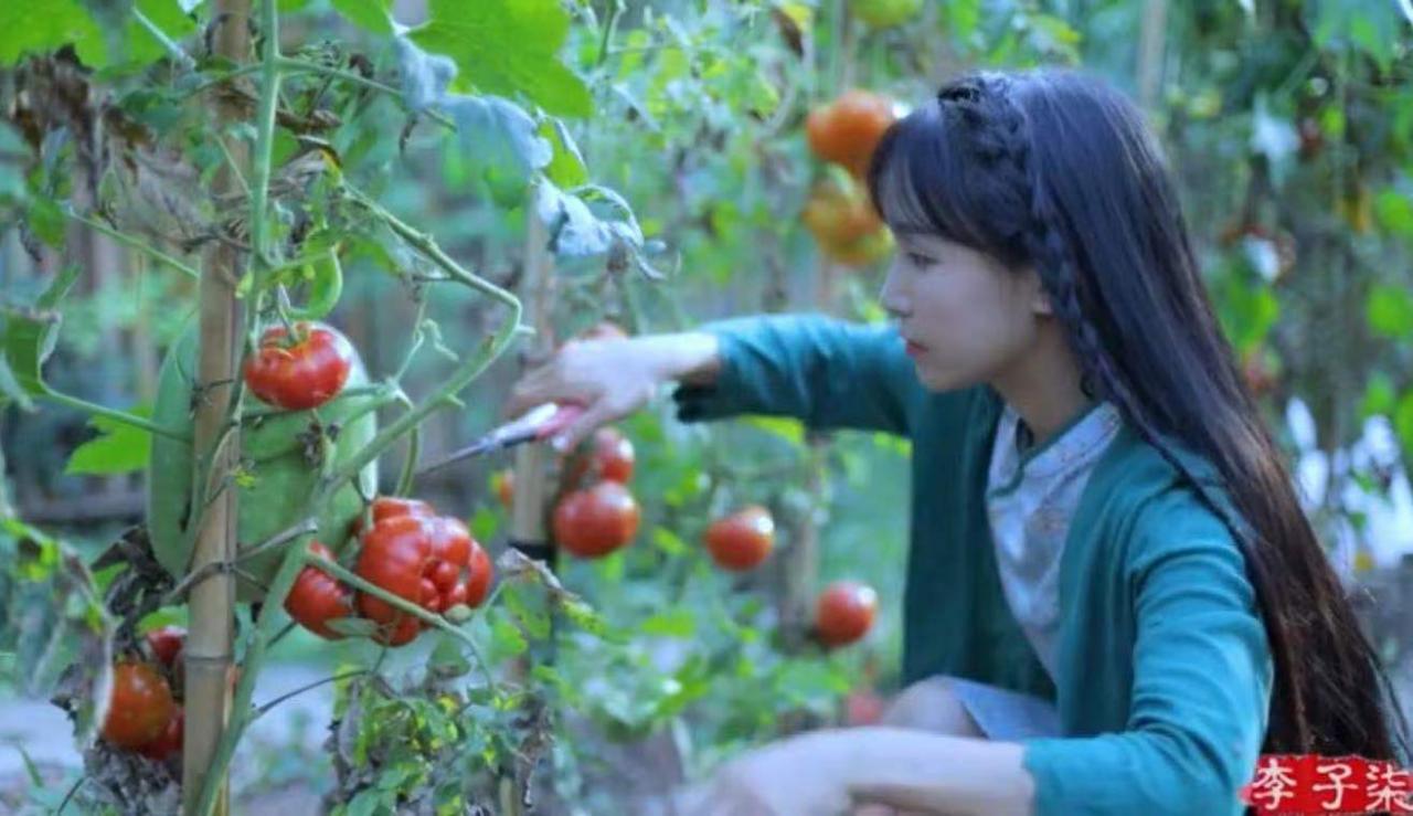 李子柒迷局:视频停更66天 千万网红斗不过资本? 无忧杂谈 第7张